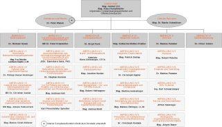Organigramm der FMA