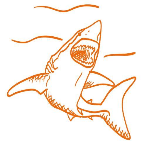 Diese Abbildung zeigt einen Hai